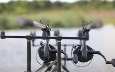A New Era in SA Specimen Carp Fishing